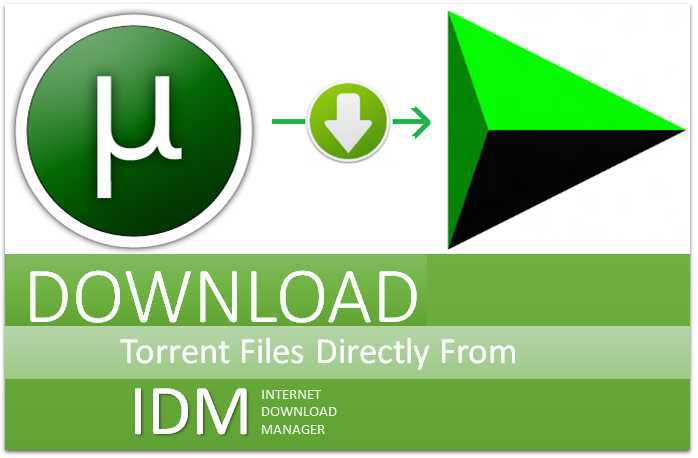 Download Torrents With IDM Download Manager (Top