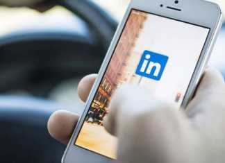 LinkedIn Launch New Program to Help Freshers Students to Get a Job
