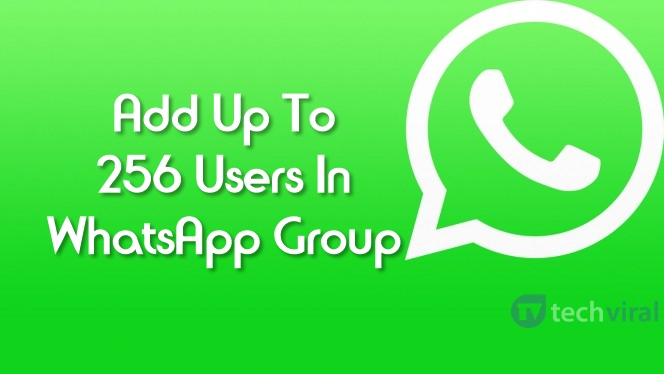 Now You Can Add Up To 256 Users in WhatsApp Group