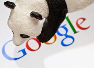 Google Introduces New Animal Noises Feature To Teach Kids About Them