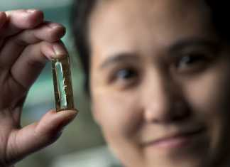Scientists Accidently Develop Batteries That Last A Lifetime