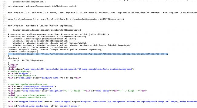 Malicious Ads in website template