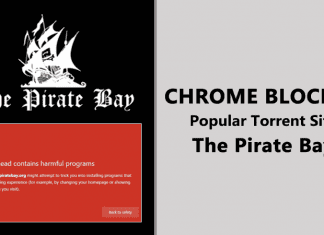 "Torrent Site ""The Pirate Bay"" Blocked By Google Chrome"
