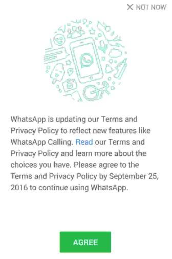 Whatsapp Number Sharing