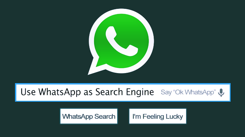 Here's How You Can Use WhatsApp As a Search Engine