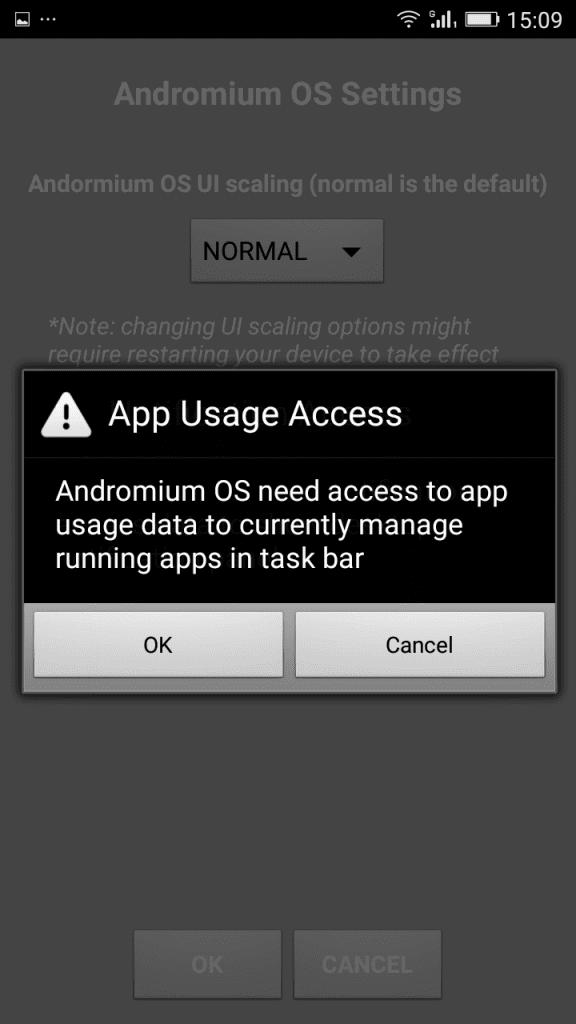 "Grant ""App Usage Access"""