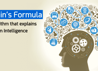 Brain's Formula: Algorithm That Explains Human Intelligence