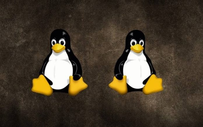 How to Run Multiple Distros Using Linux Containers