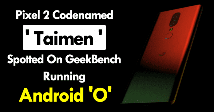 Mystery Google Pixel 2 'Taimen' Model Appears On Geekbench Running Android 'O'