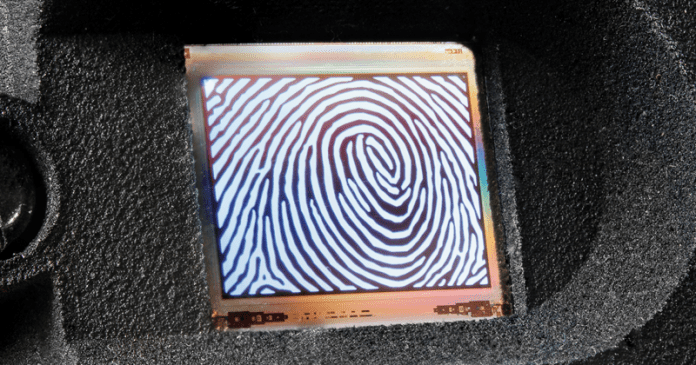 OLED Microdisplays Could Pave Way For Next-Gen Fingerprint Scanners