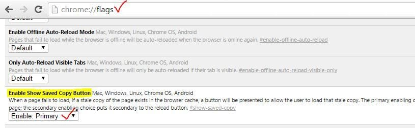 Google Chrome - How To Download Complete Websites To Browse Offline