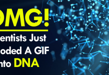 OMG! Scientists Just Encoded A GIF Into DNA