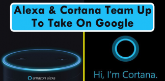 Amazon Alexa & Microsoft Cortana Team Up To Take On Google