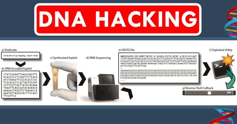 DNA Hacking: Malicious Code Written Into DNA Can Hack Computers