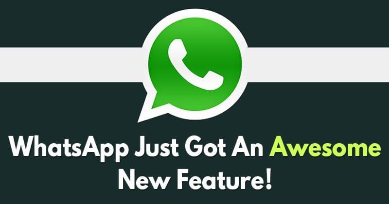 WhatsApp Just Got An Extraordinary New Feature