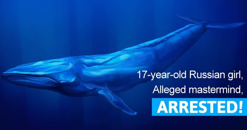 Blue Whale Challenge: 17-Year-Old Russian Girl, Alleged Mastermind, Arrested