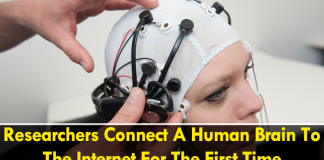 Researchers Connect A Human Brain To The Internet For The First Time
