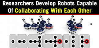 Researchers Develop Robots Capable Of Collaborating With Each Other