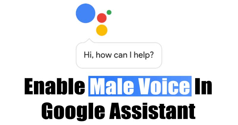 Google Assistant Got A New Male Voice - Here's How To Enable It