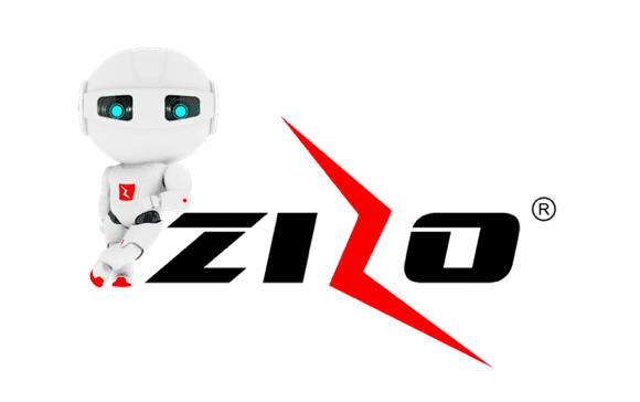 About Zizo