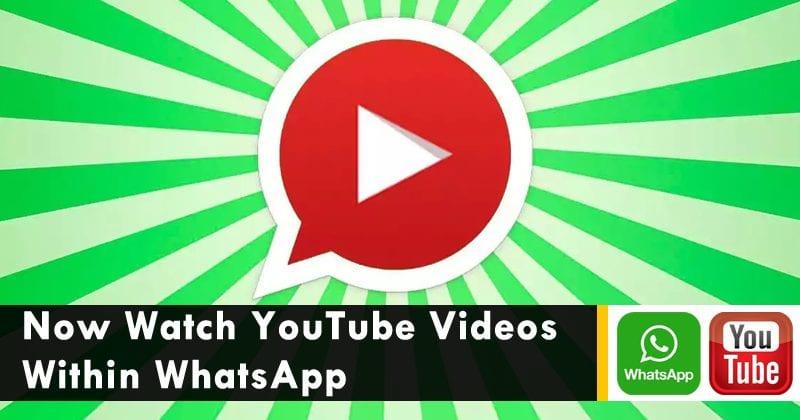 WhatsApp Update: Now Watch YouTube Videos Within WhatsApp