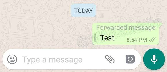 IMG 3 1 - WhatsApp Starts Labelling Forwarded Messages
