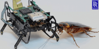 Rolls-Royce Is Developing Tiny 'Cockroach' Robots