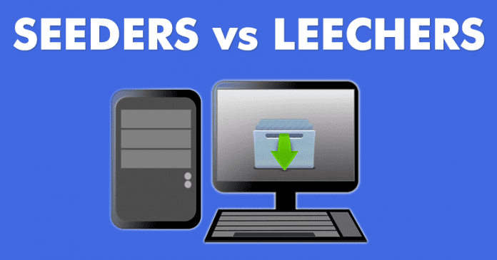 Seeders vs Leechers: What Are Seeders And Leechers?
