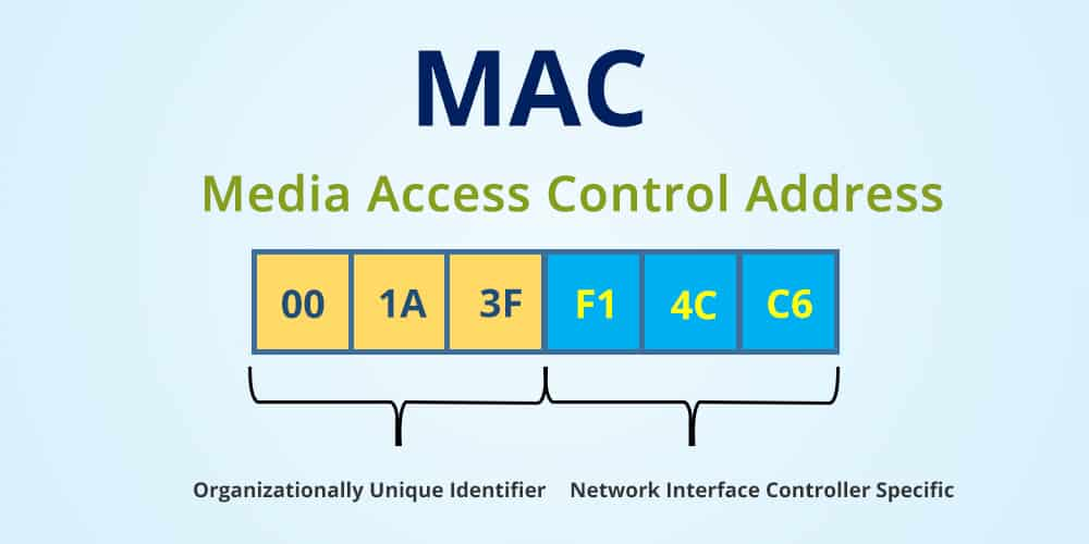 IP 3 - What Is The Difference Between An IP Address And A MAC Address?
