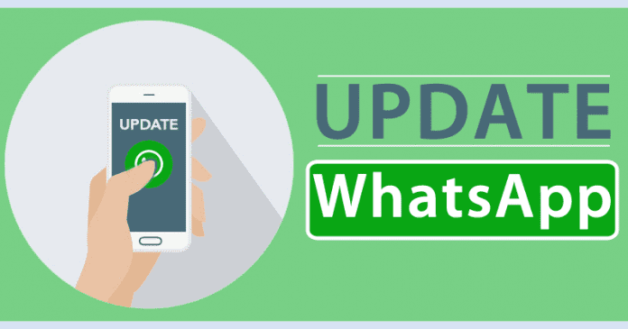 How To Update WhatsApp To The Latest Version On Any Android Device