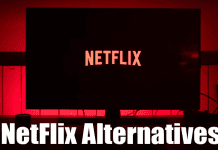 Best NetFlix Alternatives 2020