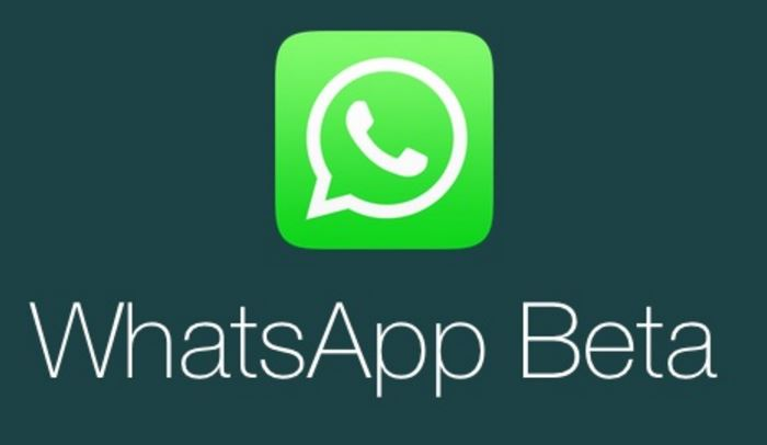 WhatsApp Beta - How To Update WhatsApp To The Latest Version On Any Android Device