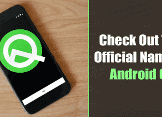 Android Q Gets an Official Name and It's not a Dessert This Time!