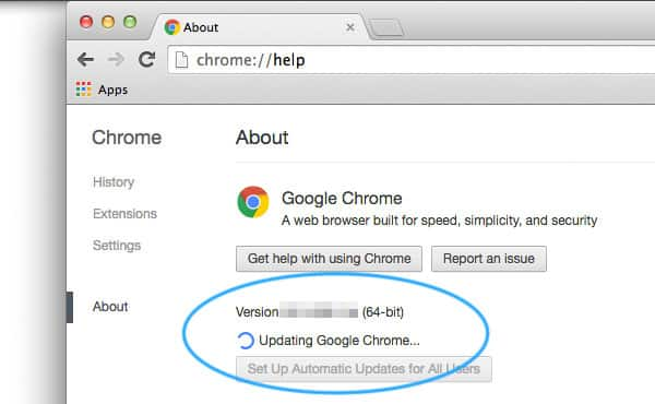 Update Your Chrome web browser