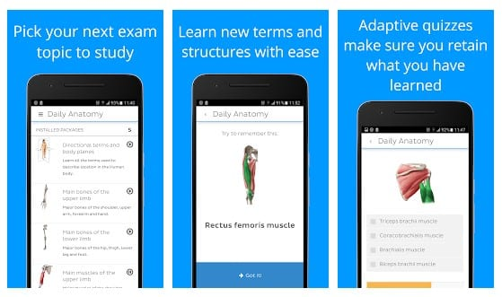 Human Anatomy Apps
