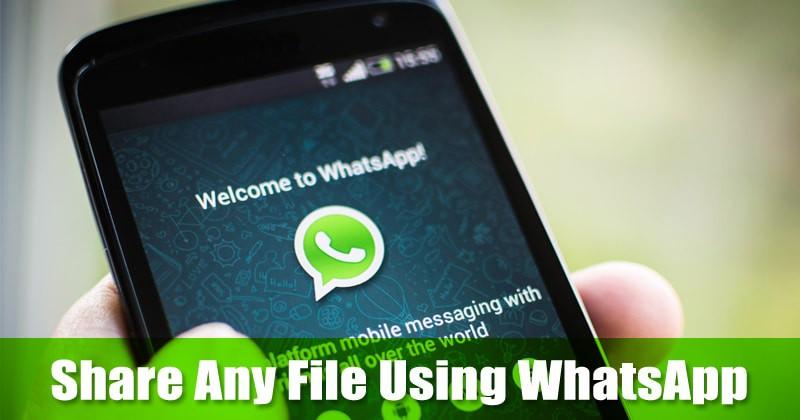 كيفية مشاركة أي ملف تقريبًا باستخدام WhatsApp