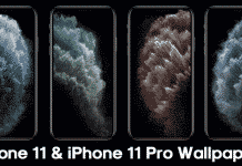 Download iPhone 11 & iPhone 11 Pro Wallpapers | HD Stock Wallpapers