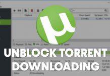 How to Unblock Blocked Torrent Downloading