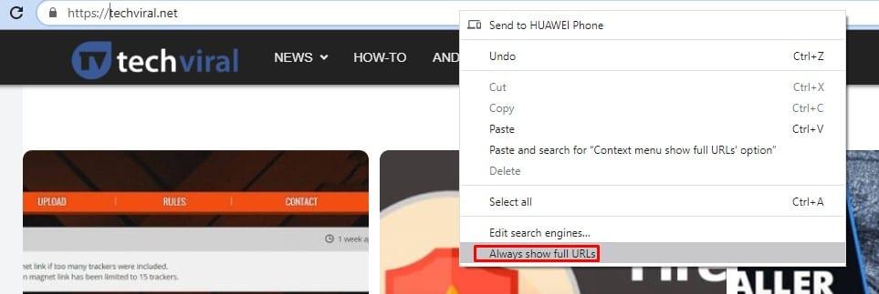 "Enable ""Always show full URLs"""