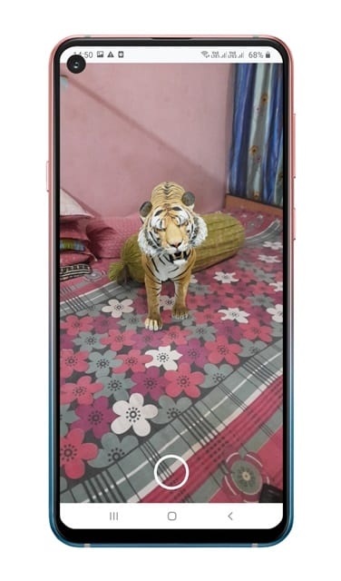 3D Animal on your Living room