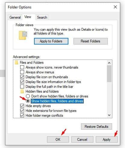 enable the 'Show hidden files, folders and drives'