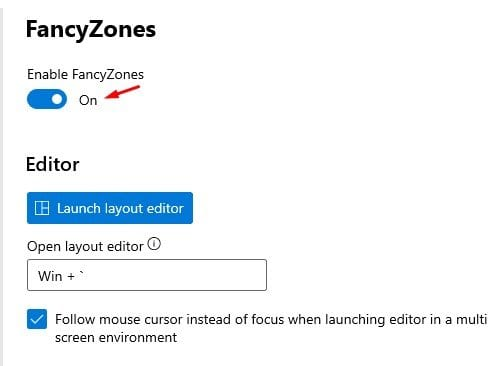 turn on the feature 'Enable Fancy Zone'