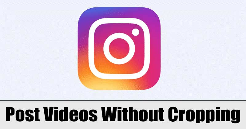 How to Post Whole Video on Instagram Without Cropping