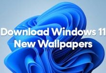Download the New Windows 11 Wallpapers on PC/Laptop (7 Backgrounds)