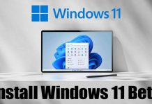 How to Download & Install Windows 11 Beta