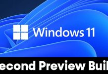 Download & Install Windows 11 Insider Preview Build (22000.65)