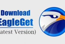 Download EagleGet For PC (2021 Latest) Free Download