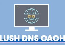 How to Flush DNS Cache in Windows 11