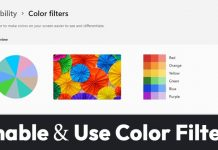 How to Enable & Use Color Filters in Windows 11