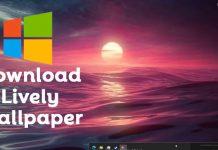 Download Lively Wallpaper Offline Installer